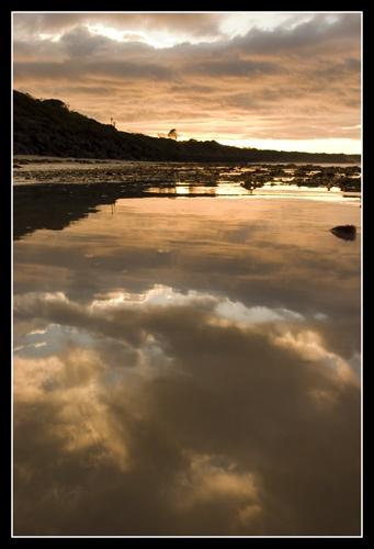 Morning reflections by armamatt1