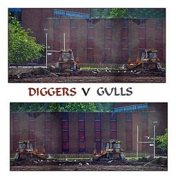DIGGERS V GULLS