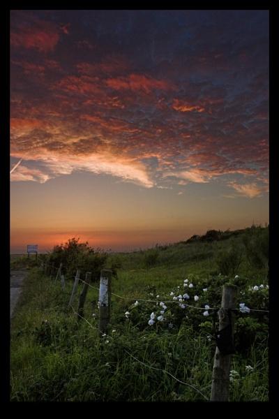 Salt marsh sunset by Skichic