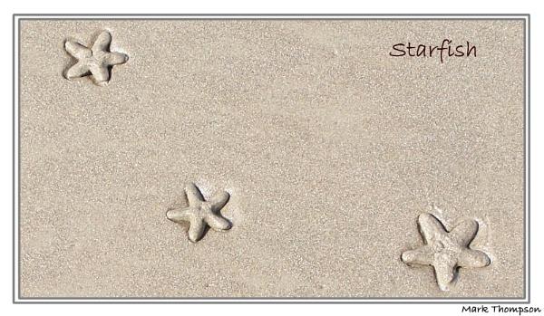 Starry Starry...Beach by mark2uk