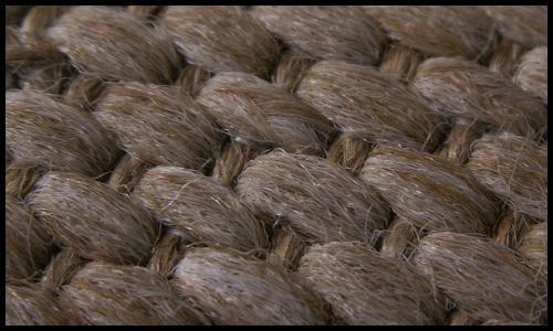 Weave by Crazius