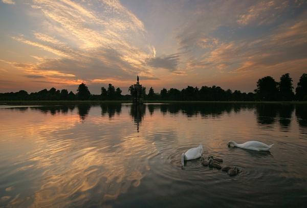 swan lake by itsasetamendi