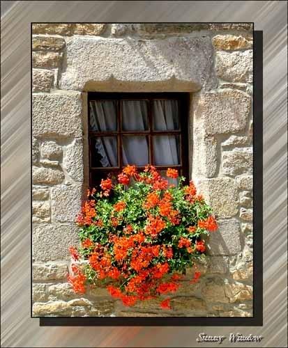 Sunny Window by icebabe