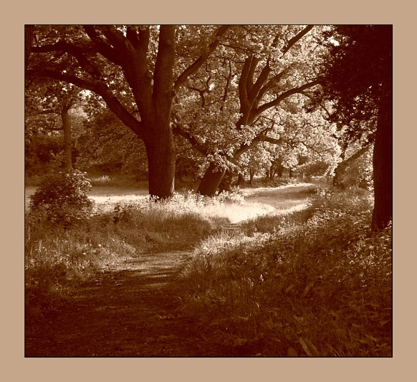 Another Walk on the Sepia Side by Dee_licious1