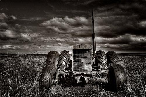 Wind Harvest by Cross