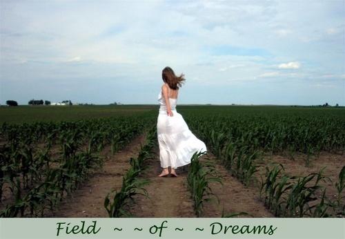Field of Dreams by jackieo