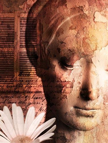 Serene Dreams by webjam