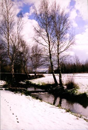 winter wander by tonyjf