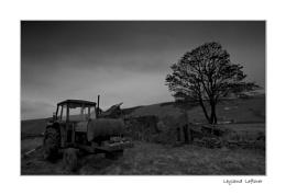 Leyland Leftover