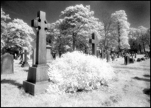 Infra Red Graveyard by jimthistle73