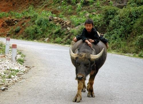 slow ride by khanhnguyen