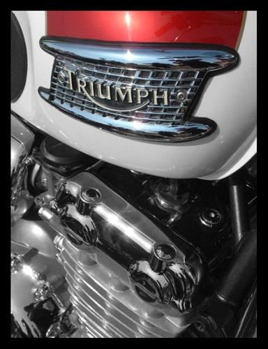 Triumph by kemic