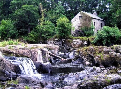 Cenarth Falls by Lensdust