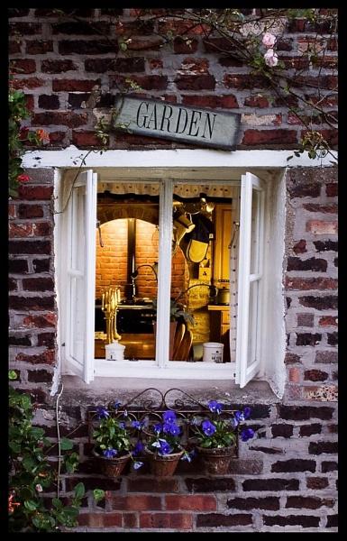 Garden Window by ODub