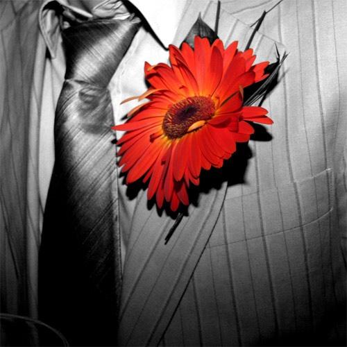 Flower Power by dean1