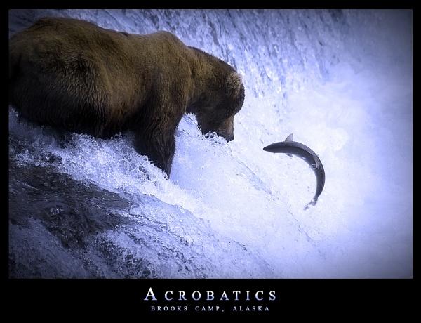 Acrobatics by BenF