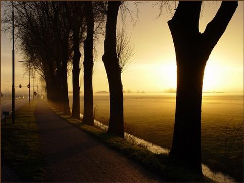 Morning break by RuudBlok