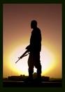 Alone in Baghdad