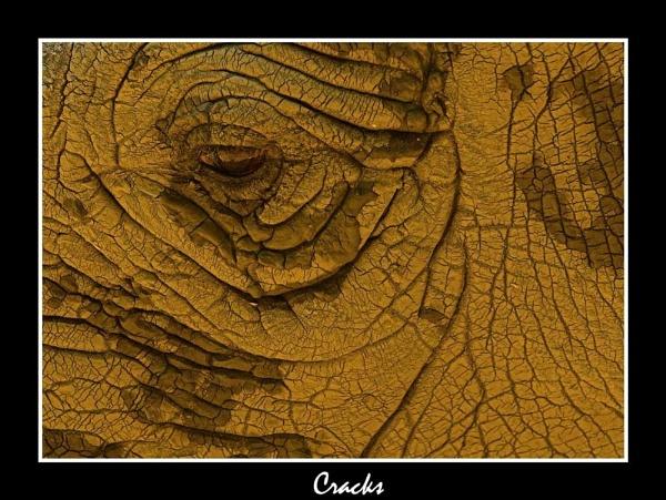 Cracks by Philip_P