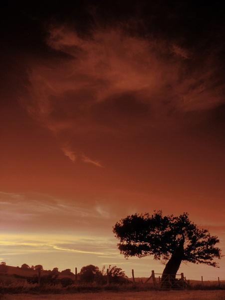 Dusk on Llwynithel by GingerBadger