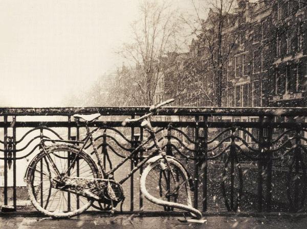 Dali\'s Bike by dunczilla