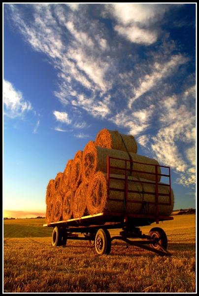 Harvest by BURNBLUE
