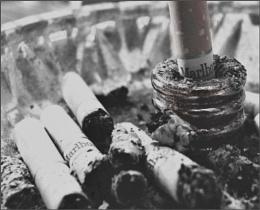 Bad Habit....