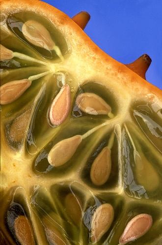 strange fruit by barrywebb