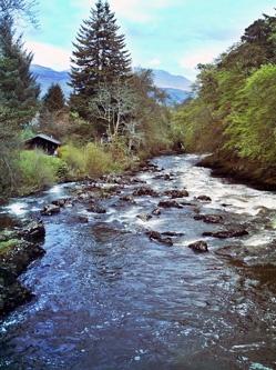 River by macieklew