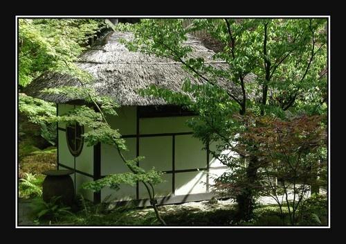 Japanese Garden by johnmw