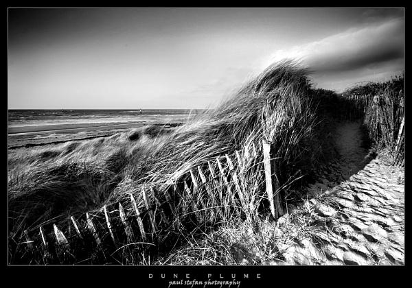 dune plume by paulstefan