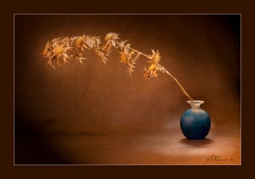 Glowing Thorns by Ruggieru