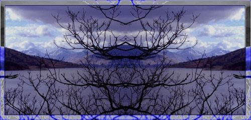Obscure Trees by JonJ