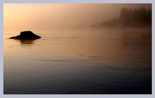 Misty Morning II by lena