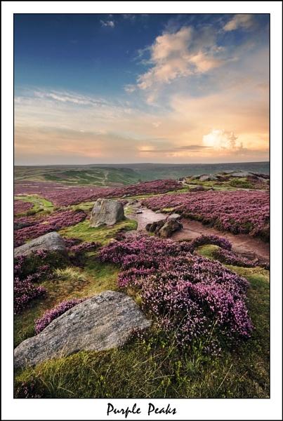 Purple Peaks by mini670