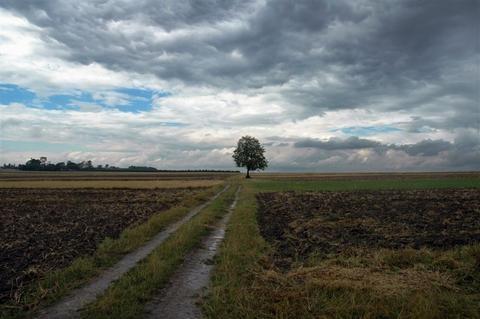 Southern Poland by Taran