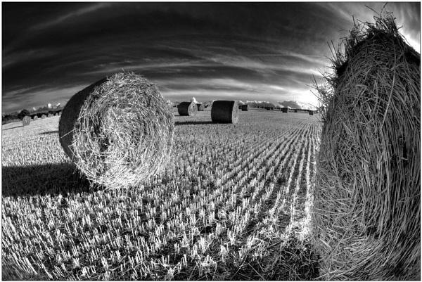 Harvests End by BURNBLUE