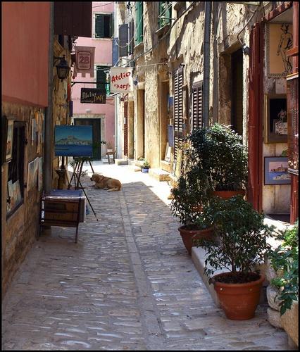 Cobbled Street (1) by WayneG