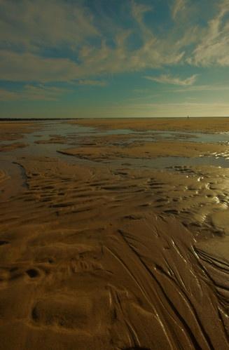Beachscape by tricky66