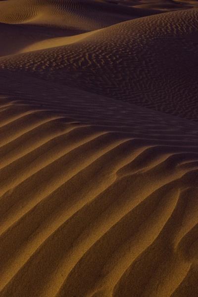 Mesquite Dunes by billma