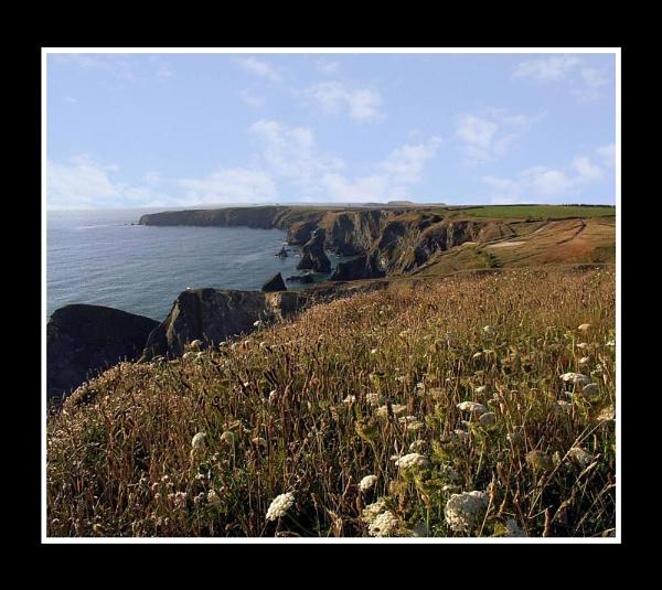 Coastal Footpath by hattrick