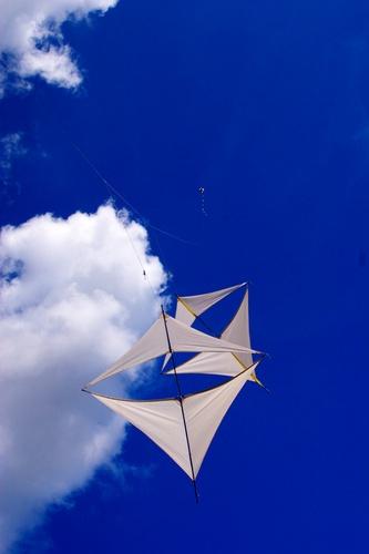 kites by curlyfilm