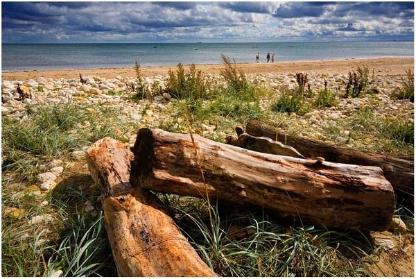 Beachcombers by whitehall55