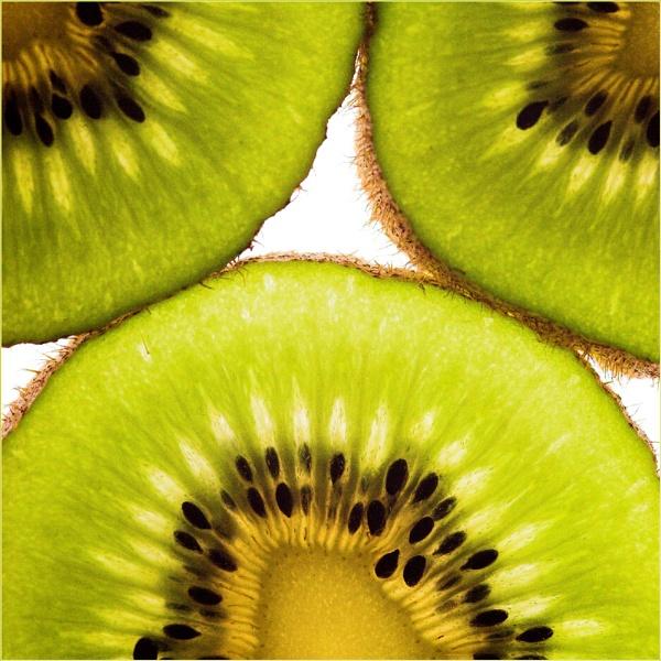 Kiwi by BigCol