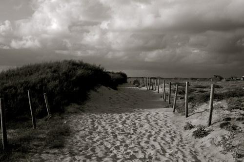 Beach Path by casey