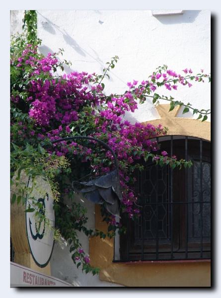 Marbella by lilipolala