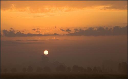 Morning Sun by tricky66