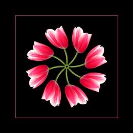 The Tulip Twister