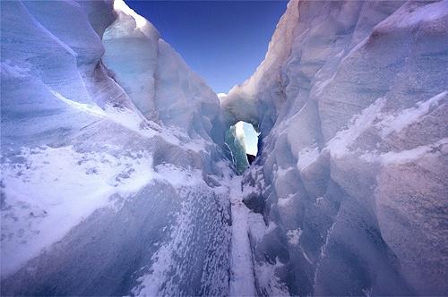 Fox Glacier by bond