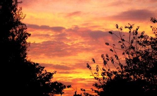 Dawn by TracyK